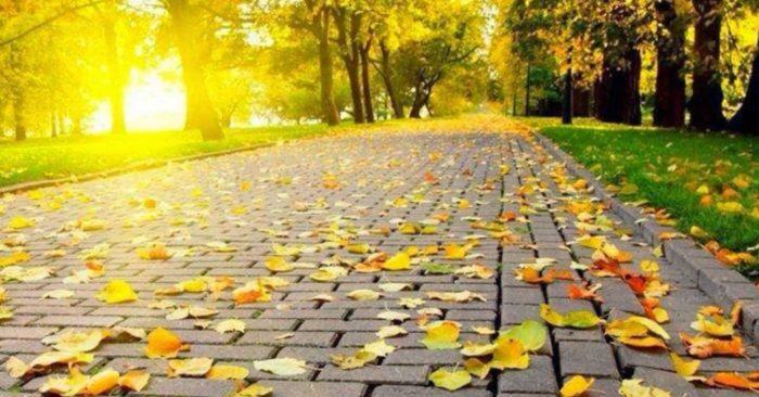 Dưỡng sinh phòng bệnh mùa thu: 3 điều kiêng kỵ