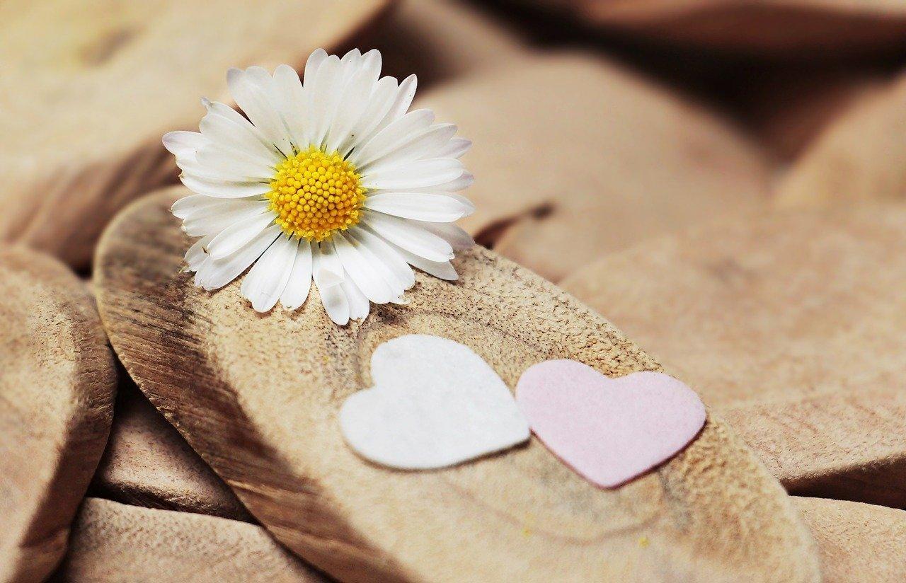 tình yêu là gì? những câu nói hay về tình yêu