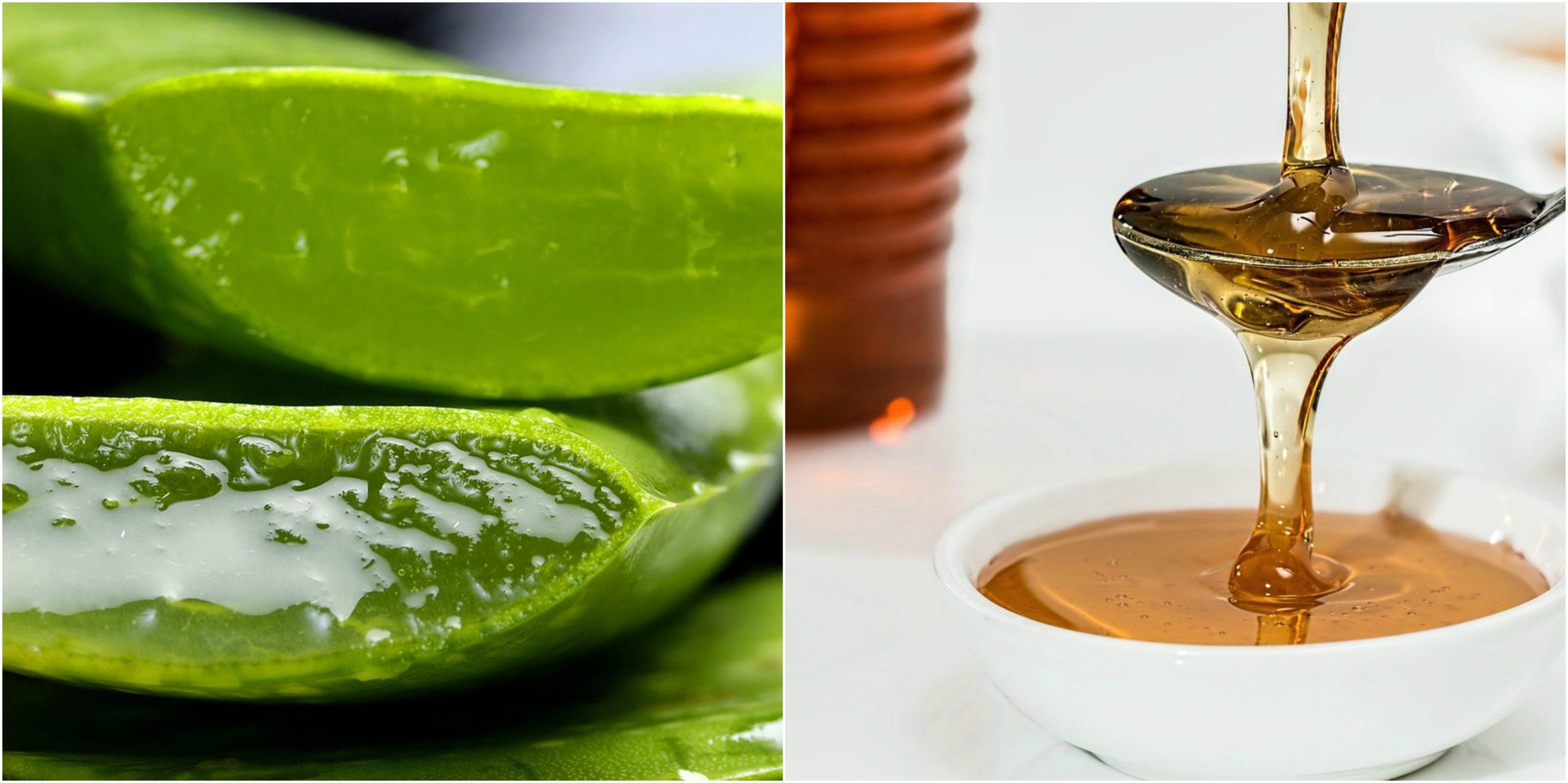 Những loại mỹ phẩm được chế tạo từ nhựa Nha đam để tạo ra những loại kem dưỡng da, do pH của gel nha đam gần giống với pH của da cho nên chúng làm cho da tươi tắn và điều hòa được độ axít của da. Mật ong là một sản phẩm thuần khiết không cho phép thêm bất kỳ chất gì vào...bao gồm nhưng không giới hạn trong, nước và các chất ngọt khác