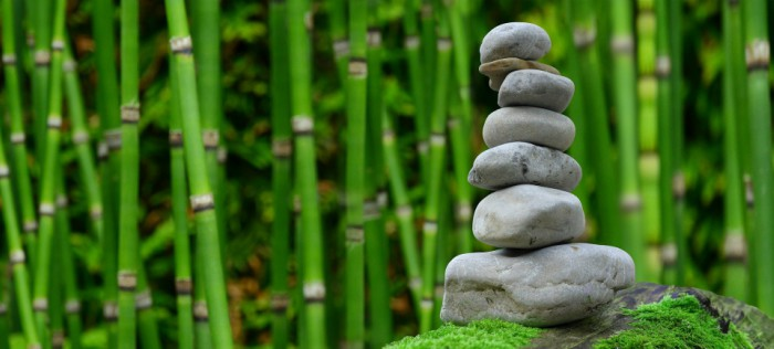 Đá là một loại vật liệu gắn liền với lịch sử phát triển của loài người.[1] Từ thời đại đồ đá con người đã biết dùng đá để làm vũ khí tự vệ, săn bắn, công cụ sản xuất.