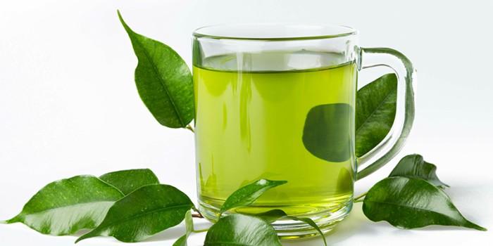 Các nghiên cứu quan sát cho thấy có mối tương quan nhỏ giữa việc tiêu thụ trà xanh hàng ngày và giảm 5% nguy cơ tử vong do bệnh tim mạch. Trong một phân tích tổng hợp năm 2015 về các nghiên cứu quan sát như vậy, việc tăng một tách trà xanh mỗi ngày có tương quan với nguy cơ tử vong do các nguyên nhân tim mạch thấp hơn một chút. Tiêu thụ trà xanh có thể tương quan với việc giảm nguy cơ đột quỵ. sử dụng trà xanh giải rượu nhanh và hiệu quả được sử dụng trong dân gian.