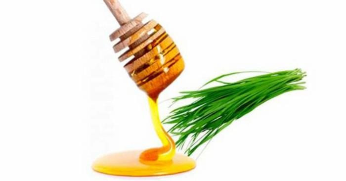 bài thuốc dân gian trị cảm cúm hiệu quả an toàn cho bé, từ lá hẹ và mật ong được nhiều người tin dùng.