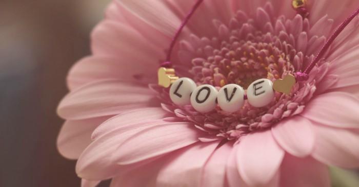 Hoa đồng tiền hay còn gọi là cúc đồng tiên Các loài trong chi Gerbera có cụm hoa dạng đầu lớn với các chiếc hoa tia hai môi nổi bật có màu vàng, da cam, trắng, hồng hay đỏ. Cụm hoa dạng đầu có bề ngoài dường như là một bông hoa, trên thực tế là tập hợp của hàng trăm hoa nhỏ riêng biệt. Hình thái của các hoa nhỏ phụ thuộc nhiều vào vị trí của chúng trong cụm hoa