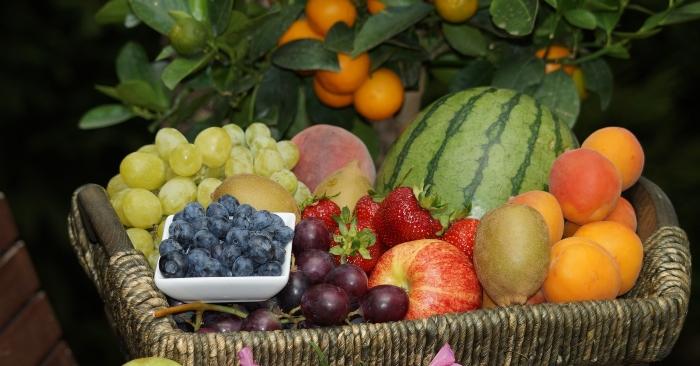 Các loại trái cây là nguồn cung cấp vitamin rất có lợi cho sức khỏe con người.