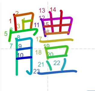 Học từ vựng tiếng Trung - chữ thể