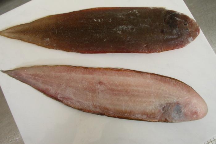 """Trong tiếng Việt cá lưỡi trâu có rất nhiều tên, như cá lưỡi mèo, cá lưỡi bò, cá bơn cát, cá bơn, cá thờn bơn. Chúng cũng được gọi bằng nhiều tên trong tiếng Anh: Solefish, Tongue fish, Tongue sole, Flounder sole, Speckled tongue sole, Speckled tongue. Trong tiếng Hy Lạp """"kyon"""" có nghĩa là chó, và """"glossa"""" nghĩa là lưỡi. Trong đó phổ biến nhất là tên gọi cá lưỡi trâu do chúng có thân dẹt và nhỏ dần về phía đuôi trông giống chiếc lưỡi của con trâu nên mới gọi là cá lưỡi trâu"""