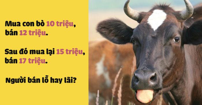 Những câu đố mẹo: bài toán tính lãi bán bò