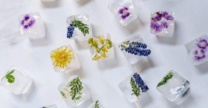 Những viên đá lạnh nhiều màu sắc khi được cho thêm các cánh hoa hay các loại quả mọng say nhuyễn; khi dùng để massage da mặt hàng ngày sẽ giúp phái đẹp có một làn da sáng mịn hồng hào