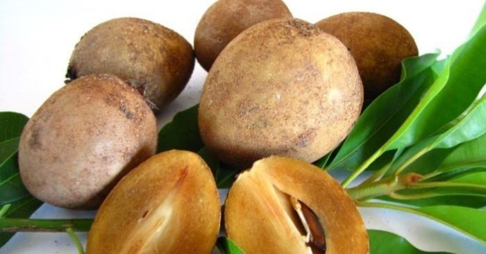 Sa- bô-chê là loại quả ngon ngọt được nhiều người yêu thích.