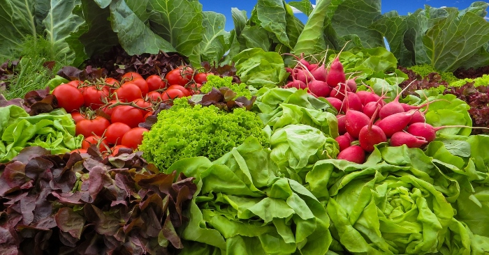 Bị gút nên ăn gì?... các loại rau nhiều chất xơ đều phù hợp cho người bị gút