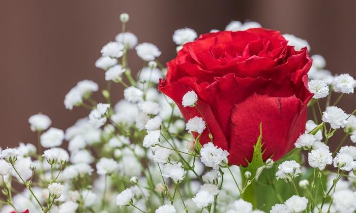 Bạn có thể tận dụng những chai thủy tinh trong nhà để làm chậu cắm hoa. Đây là cách cắm hoa hồng để bàn đẹp, dùng ít hoa, giúp tiết kiệm chi phí được nhiều cô dâu chú rể lựa chọn. Hơn nữa, do dùng ít hoa nên bạn có thể cắm hoa hồng để bàn đám cưới bằng chai thủy tinh một cách đơn giản, dễ dàng, nhanh chóng hoàn thành số lọ hoa hồng cần dùng cho cả đám cưới. Màu sắc rực rỡ của hoa hồng, sự trong suốt của chai thủy tinh sẽ giúp bạn dễ dàng có lọ hoa hồng để bàn đẹp mắt. Đồng thời, khiến không gian đám cưới thêm tươi vui, ý nghĩa.