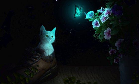 loài mèo có khả năng tái sinh