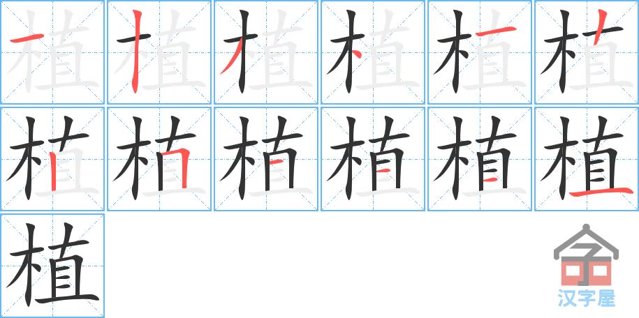 Học từ vựng tiếng Trung có trong sách Chuyển Pháp Luân - chữ thực; học tiếng trung; từ vựng tiếng trung; tự học tiếng trung; học tiếng trung online; học tiếng trung cơ bản; hoc tieng trung
