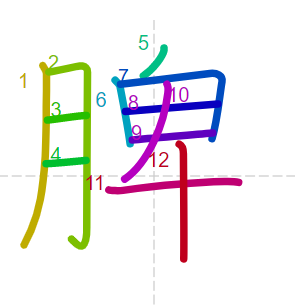 Học từ vựng tiếng Trung có trong sách Chuyển Pháp Luân - chữ tỳ; học tiếng trung; từ vựng tiếng trung; tự học tiếng trung; học tiếng trung online; học tiếng trung cơ bản; hoc tieng trung