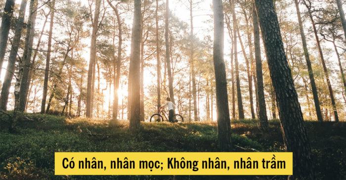 Tục ngữ Việt Nam: Có nhân, nhân mọc; Không nhân, nhân trầm