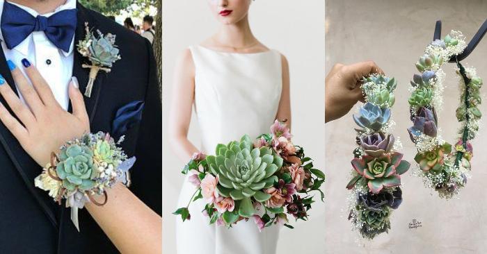 Ý nghĩa Hoa cưới sen đá; Cách bó hoa; cầm tay cô dâu bằng; Cách cắm; giá bao nhiêu mua ở TPHCM.
