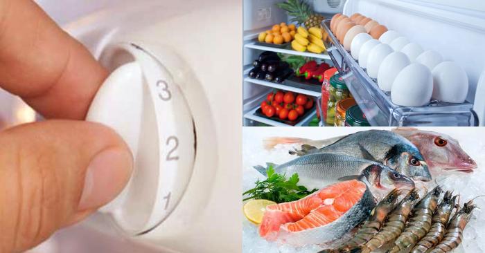 Bảo quản thực phẩm; Tại sao phải bảo quản thức ăn trong tủ lạnh Sinh học 10; Dự trữ thức ăn trong tủ lạnh; Cách sắp xếp đồ ăn trong tủ lạnh; Cách bảo quản thức ăn chín trong tủ lạnh.