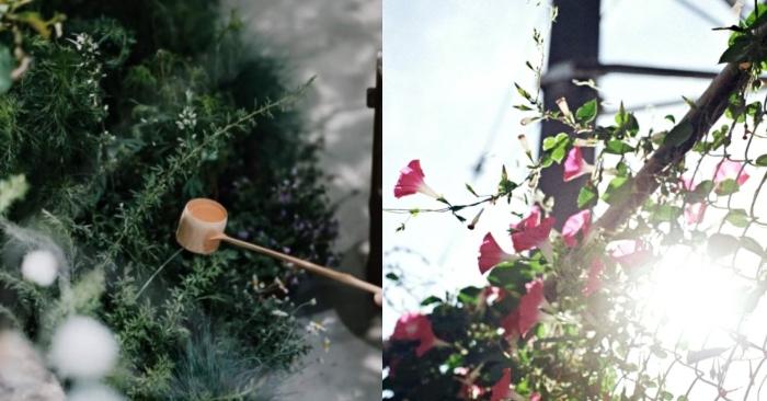 Ngôi nhà phủ đầy hoa của cô gái 'thất bại thì về nhà'... Thiết kế nhà độc đáo ở Việt Nam; Những ngôi nhà độc và lạ; Hình ảnh những ngôi nhà độc đáo; Thiết kế nhà độc lạ.