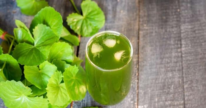 Trong rau má có chứa nhân tố trường thọ gọi là 'Vitamin X trẻ trung' có tác dụng bổ dưỡng cho não và các tuyến nội tiết; nước ép rau má giúp cải thiện các vấn đề về hệ tuần hoàn và làn da.