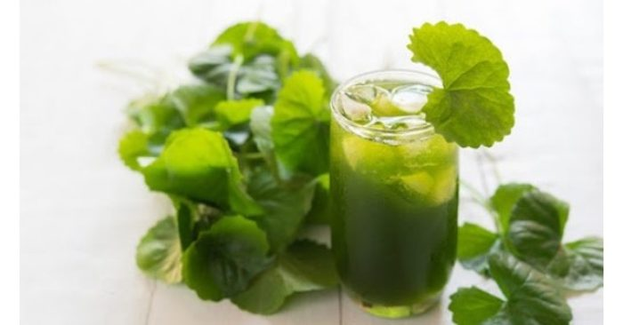 Nước rau má loại đồ uống giải nhiệt mùa hè ngon mát, bổ dưỡng rất tốt cho sức khỏe và làn da. Nhưng theo chuyên gia, để có tác dụng tốt cho sức khỏe cần uống nước rau má đúng cách; nếu không sẽ gây hại cho người sử dụng
