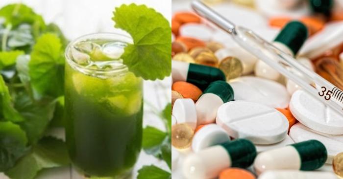Nếu bạn đang uống thuốc tây trị bệnh, thì không nên uống cùng nước rau má tránh ảnh hưởng đến sức khỏe và hiệu quả của thuốc.