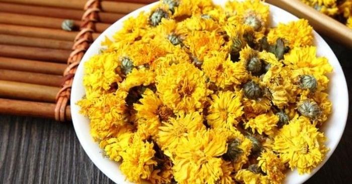 Trà hoa cúc có thành phần chính là hoa cúc khô; Cách uống trà hoa cúc; Cây trà hoa cúc.