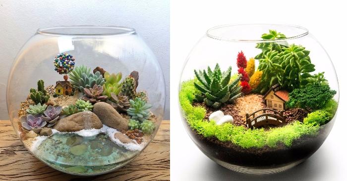 Sen đá là gì; Tiểu cảnh mini de bàn; Nguyên liệu terrarium; Tiểu cảnh mini; Terrarium bình kín.