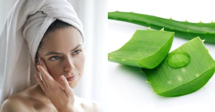 Nha đam có nhiều axit cinnamic, và các vitamin B1, B2, B6 cùng với axit folic,..; giúp làn da sạch  mụn, căng mọng, tràn đầy sức sống. Bôi nha đam lên mặt để qua đêm được không; cách đắp nha đam lên mặt;