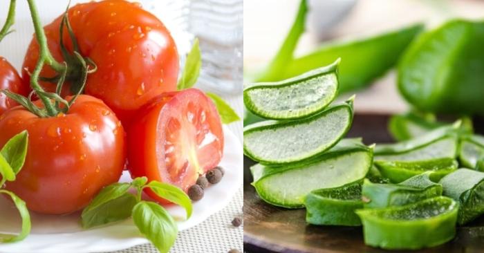 Những dưỡng chất quý giá cho da có trong cà chua như: vitamin C, E… không chỉ giúp trắng da, trị mụn hiệu quả; mà còn giúp dưỡng da mịn màng tươi tắn