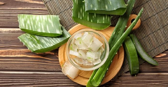Gel nha đam được biết tới như một phương thuốc cực hữu hiệu để chữa lành vết thương ngoài da như các vết bỏng độ một, độ hai hoặc vết loét.