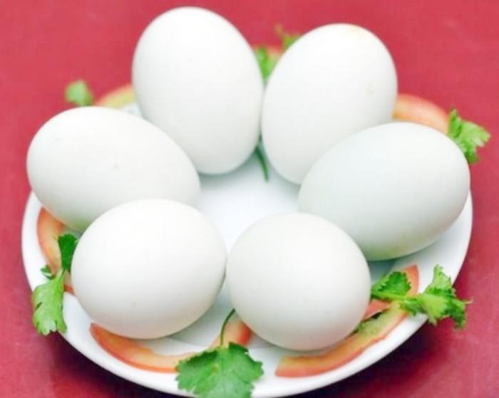 Hột vịt lộn xào sa tế; Hột vịt lộn xào nước mắm; Lẩu trứng vịt lộn; Cách làm món trứng vịt lộn hấp bia; Hột vịt lộn xào tỏi; Cách làm nước chấm trứng vịt lộn.