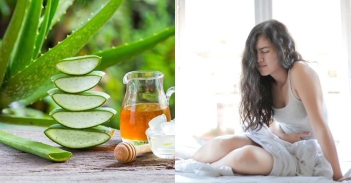 cách làm nước nha đam mật ong thanh nhiệt giải  độc; không bị đắng; nấu chè; hết nhớt; ép