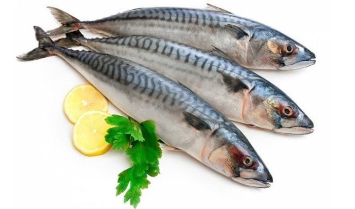 Cách nấu bún sứa cá thu; làm bún sứa mắm ruốc; Bún cá sứa; Cách nấu bún chả cá Nha Trang; Bún chả cá.