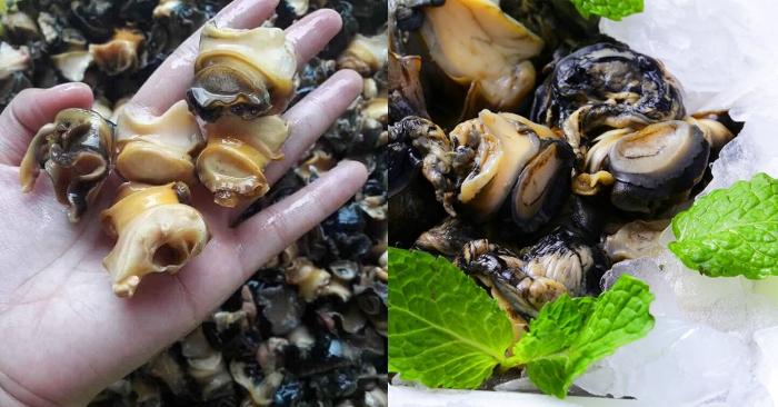 Cách nấu ốc xào chuối đậu; om chuối đậu; Hình ảnh ốc om chuối đậu; Ốc om chuối đậu miền Bắc; Cách sao ốc chuối đậu.
