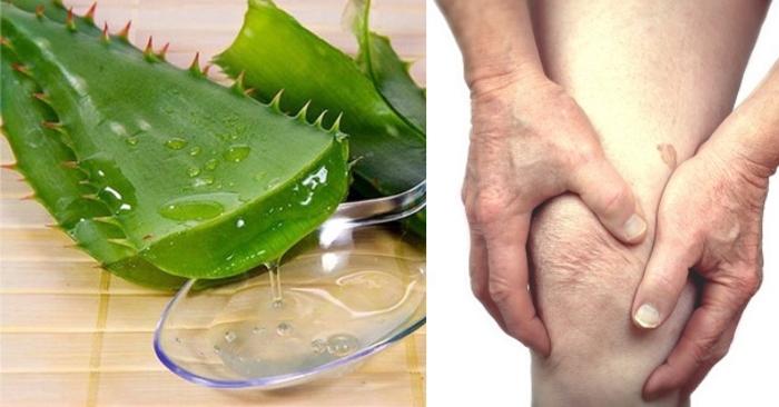 Gel nha đam có tác dụng xoa dịu, làm mát; đẩy lùi cơn đau và chống viêm rất hiệu quả; yếu sinh lý;