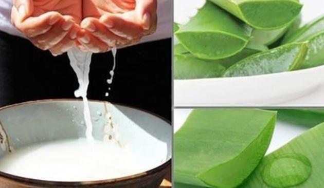 Nước vo gạo  chứa nhiều vitamin, khoáng chất  và các chất chống oxy hóa. giúp giảm ma sát bề mặt và tăng độ đàn hồi cho tóc;  chữa hói đầu bằng nha đam;