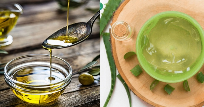 Dầu oliu chứa lượng vitamin E dồi dào, có khả năng dưỡng ẩm, làm mềm tóc rất tốt; cách làm gel nha đam dưỡng tóc;