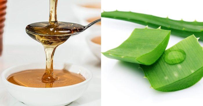 Những dưỡng chất có trong nha đam mật ong và rượu, khi kết hợp với nhau sẽ tạo ra hỗn hợp có tác dụng điều trị bệnh và làm đẹp hiệu quả.