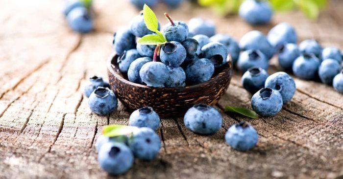 Quả việt quất có nguồn gốc ở Bắc Mỹ. Đây là loại trái cây rất giàu anthocyanins, các chất chống oxy hóa tự nhiên và các dưỡng chất khác – có rất nhiều lợi ích cho sức khỏe và nhan sắc của bạn