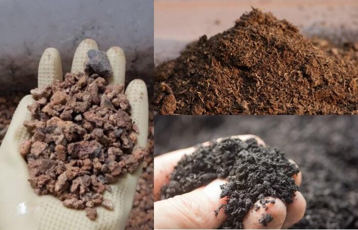 Trộn đất trồng sen đá đơn giản nhất; Mua đất trồng sen đá tphcm; Trồng sen đá bằng đất Akadama; Trồng sen đá bằng đất thường được không.