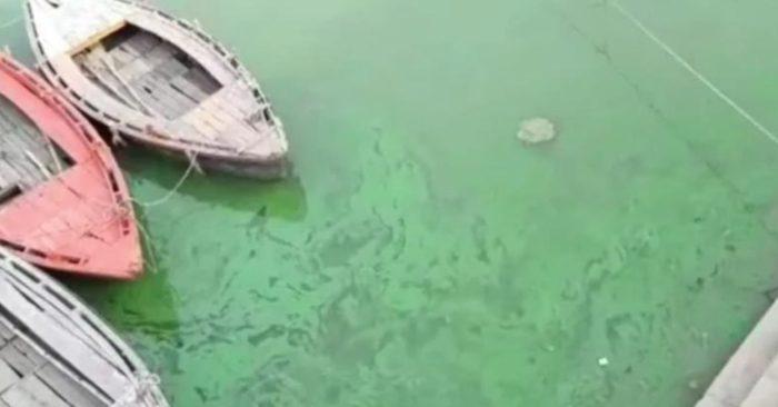 Sông Hằng bất ngờ chuyển màu xanh, người dân Ấn Độ hoảng sợ