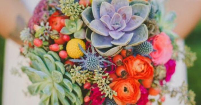 Bonsai hoa đá; Ý nghĩa; để bàn; Cây phong thủy ý nghĩa, các loại đẹp nhất thế giới, bán ở đâu.