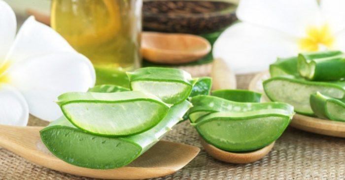 Cách làm mặt nạ nha đam dầu dừa đơn giản, có tác, cây, có khả, đặc biệt là, với nước, cấp ẫm.