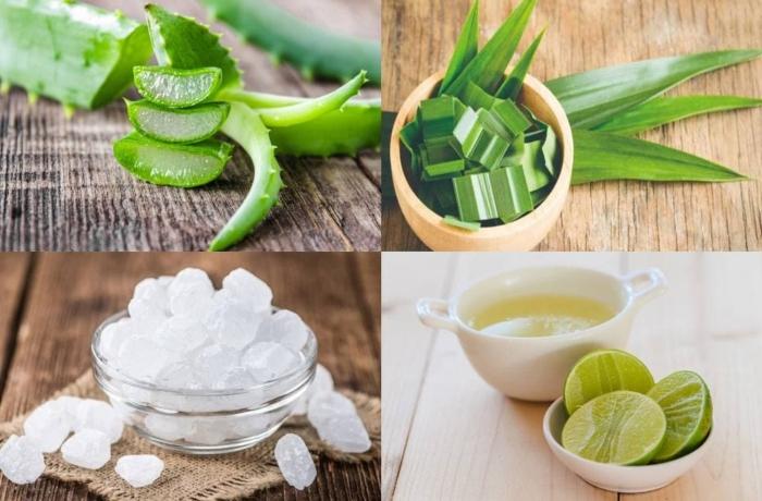nấu nha đam và hạt sen, sữa tươi, đường phèn, thực hiện, đơn giản, chất dinh dưỡng, chống oxy hóa.