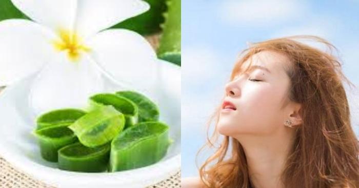 đắp mặt nạ nha đam có ăn nắng không; nếu dùng mặt nạ nha đam 3 lần/tuần da sẽ khỏe, ít bị bắt nắng