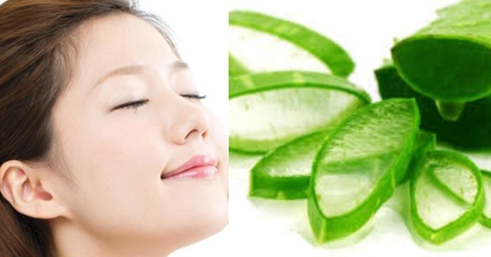 Nha đam không chỉ tốt cho sức khỏe; mà đắp mặt nạ nha đam còn có tác dụng tuyệt vời cho làn da.