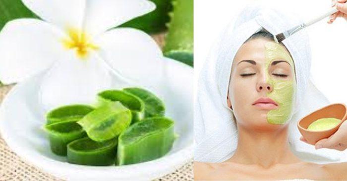 Mặt nạ nha đam bạn chỉ nên đắp 2- 3 lần/ 1 tuần là đủ để da có thể hấp thụ hết các dưỡng chất