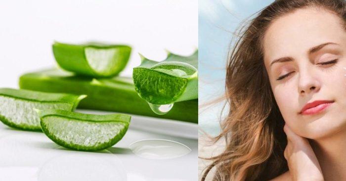 Đắp nha đam lên mặt mỗi ngày là cách giúp da trắng mịn nhờ hấp thụ trực tiếp các dưỡng chất