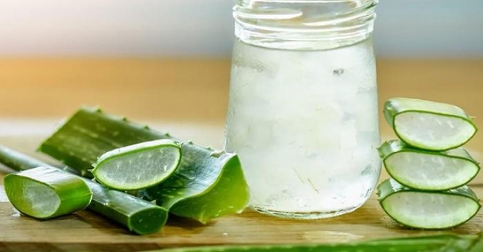 Uống nha đam đường phèn mỗi ngày có tốt không; khi sử dụng; tình trạng; nha đam tươi; nhựa nha đam.